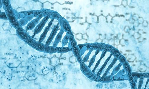DNA - Синдромальная генетическая патология