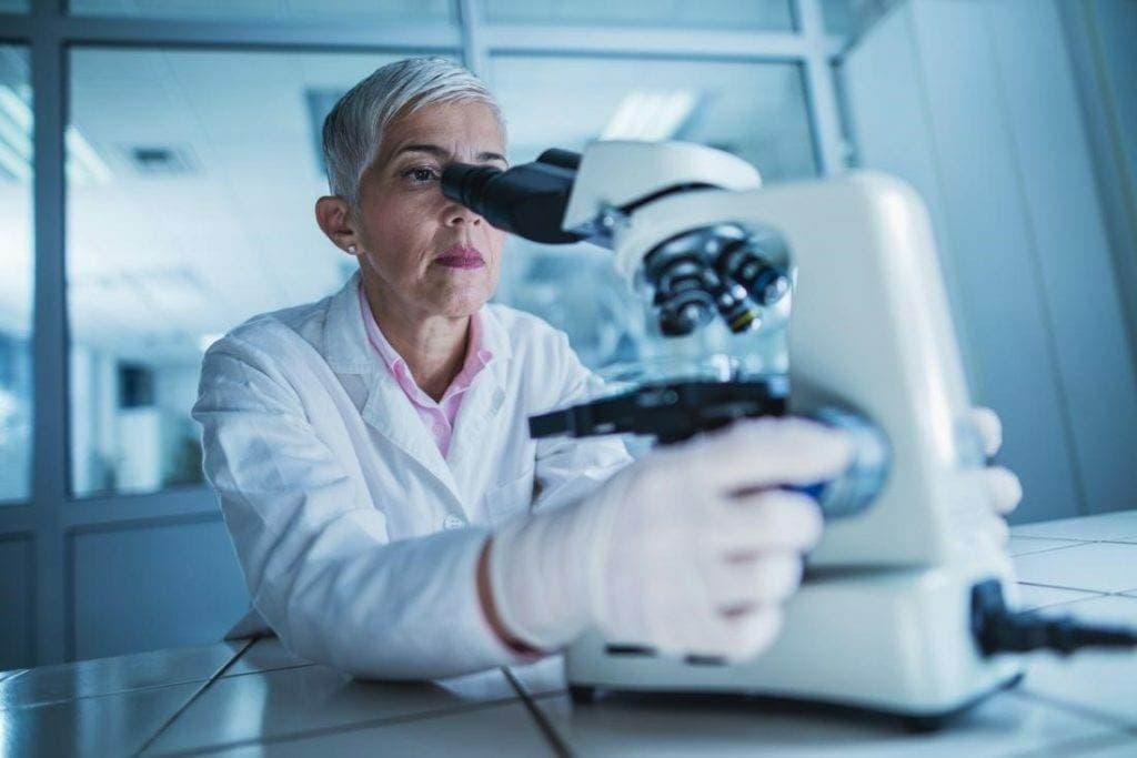 6654 1024x683 - Кишечные микробы могут стимулировать иммунную систему для борьбы с раком