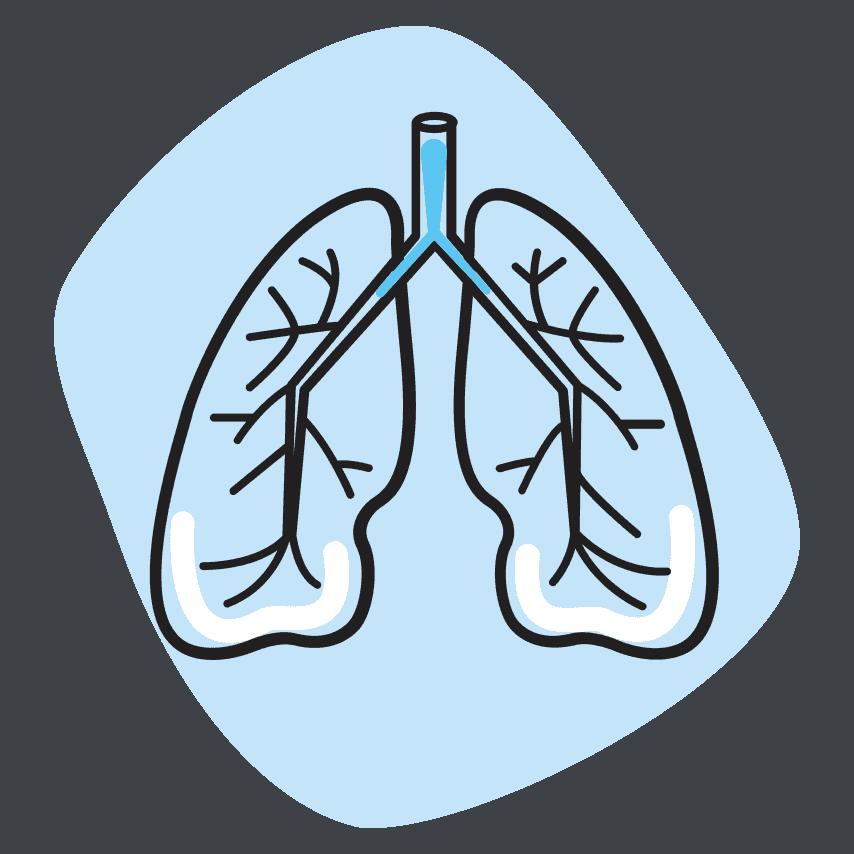 pulmonology - Пульмонология