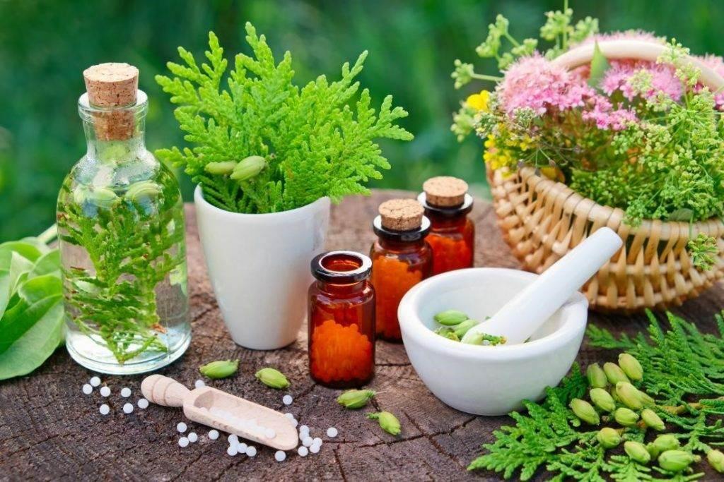 gomeopatiya pri astme 1024x683 - Эффективна ли гомеопатия при астме и каковы риски?