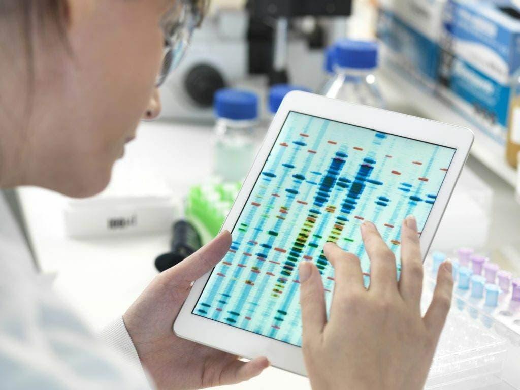 gen kotoryj pomogaet regulirovat uroven holesterina - Исследователи идентифицировали ген, который помогает регулировать уровень холестерина